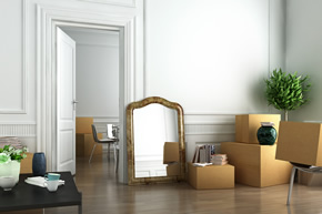 Packing service from professional Movers